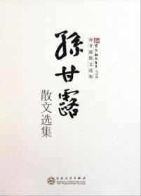 孙甘露散文选集/新百花散文书系