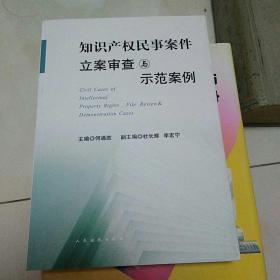 知识产权民事案件立案审查与示范案例