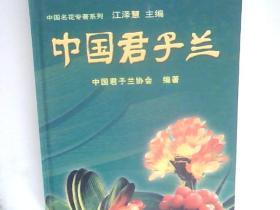 中国君子兰(精装)