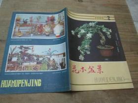 花木盆景1985.2