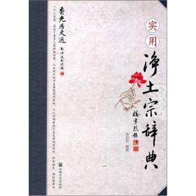 实用净土宗辞典(香光居文选)