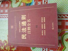中华人民共和国民法通则注释全书(1)