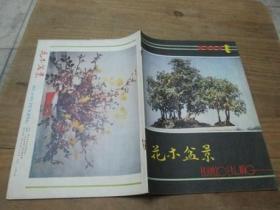 花木盆景1985.1