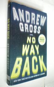 *No Way Back: A Novel (平装原版外文书)