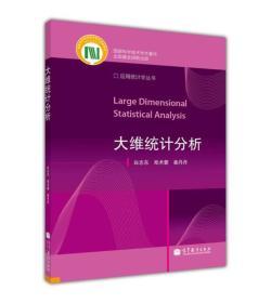 应用统计学丛书:大维统计分析