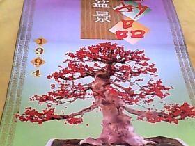 1994年老挂历 盆景妙品