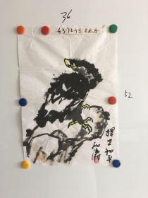 广东画家孙殿涛鹰图一幅36*52CM:捍卫和平