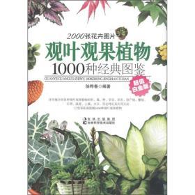 观叶观果植物1000种经典图鉴(超值白金版)