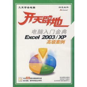 开天辟地:电脑入门金典Excel 2003/XP高级案例