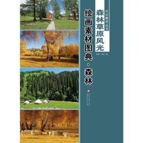 大众美术丛书—— 森林草原风光绘画素材图典(全二册)