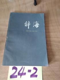 辞海 语言文字0.99元