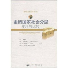 现代社会学文库:金砖国家社会分层:变迁与比较