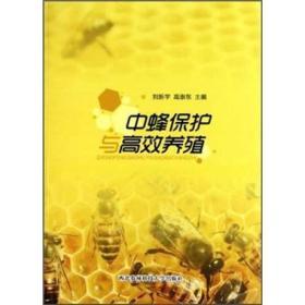 中蜂保護與高效養殖