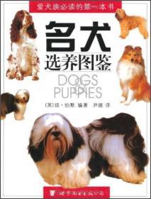 名犬选养图鉴