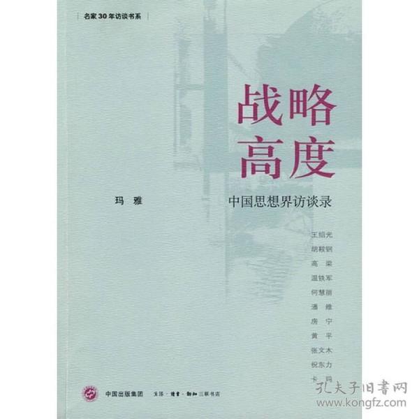 战略高度:中国思想界访谈录