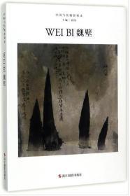 中国当代摄影图录:魏壁