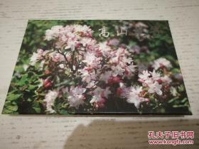 《TP9《高山花卉》特种邮资明信片》一套四枚 JYC