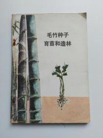 毛竹种子育苗和造林