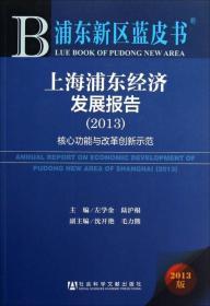 上海浦东经济发展报告