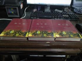 中国古典名著百部 施公案 (上中下) 大32开本精装