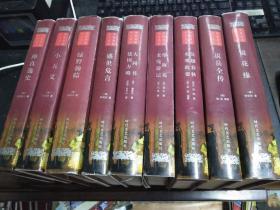 中华古典名著百部--禅真逸史 大32开本精装