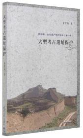 新视野·文化遗产保护论丛(第一辑):大型考古遗址保护