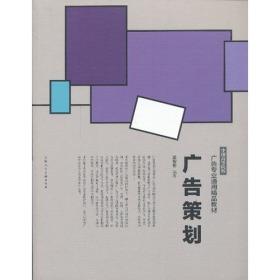 广告策划---中国高等院校广告专业通用精品教材