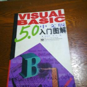 Visual Basic 5.0 中文版入门图解