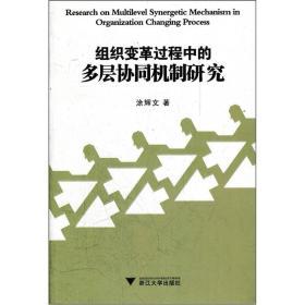 组织变革过程中的多层协同机制研究