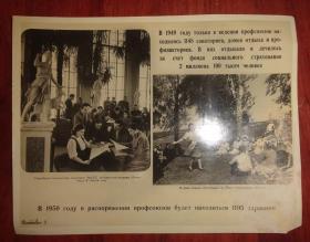 黑白相片【1950年外文相片】