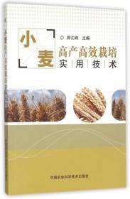 小麦高产高效栽培实用技术