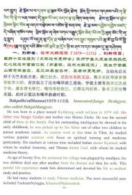 藏医药学创新巨匠