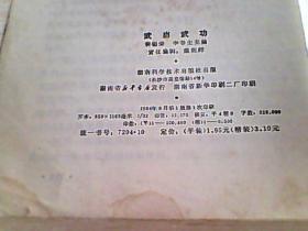 武当武功【主编:裴锡荣 李春生】