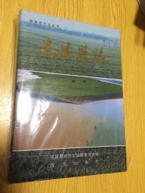高陵县志 一版一印 3000册【详情看图——实物拍摄】