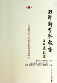 田野新考察报告:第五卷
