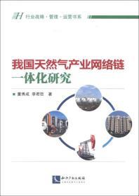 行业战略·管理·运营书系:我国天然气产业网络链一体化研究