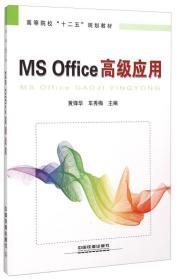 MS Office高级应用
