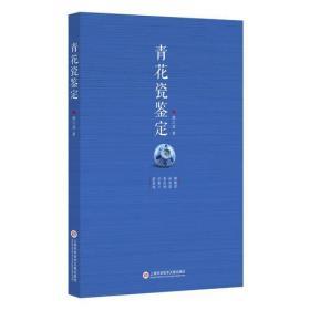 青花瓷鉴定 9787543971264