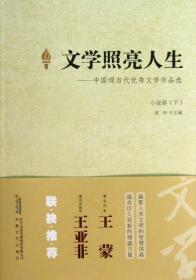 文学照亮人生 小说卷(下)