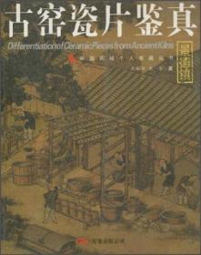 中国民间个人收藏丛书:古窑瓷片鉴真(景德镇)
