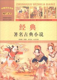 中国文化百科 灿烂文学 经典:著名古典小说(彩图版)