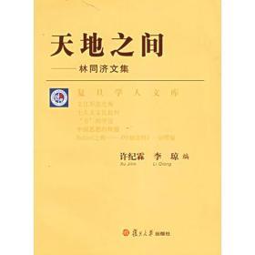 天地之间:林同济文集