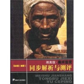 湘美版·美术鉴赏同步解析与测评 专著 马永建编著 xiang mei ban · mei shu jian sh