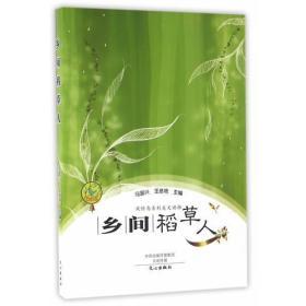 正版新书风铃鸟系列美文读物:乡间稻草人(2019年教育部推荐)