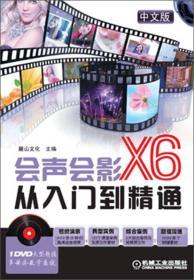 会声会影X6从入门到精通(中文版)