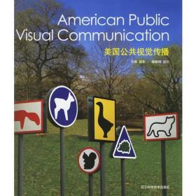 美国公共视觉传播