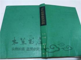 原版日本日文书 原色植物检索図鑑 矢野佐 北隆馆 1962年6月 大32开硬精装