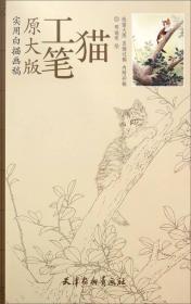 实用白描画稿:工笔猫(原大版)