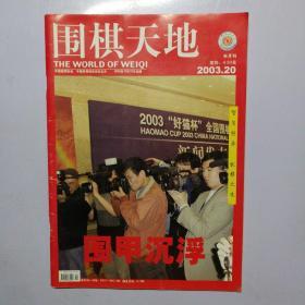 围棋天地 2003年 第20期