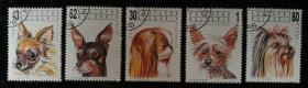 """外邮:1991年,保加利亚""""宠物""""邮票(5全,盖销)"""
